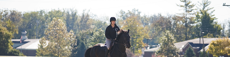 Female student riding a horse at the equestrian center