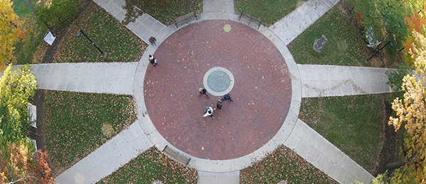 View from above of the seal