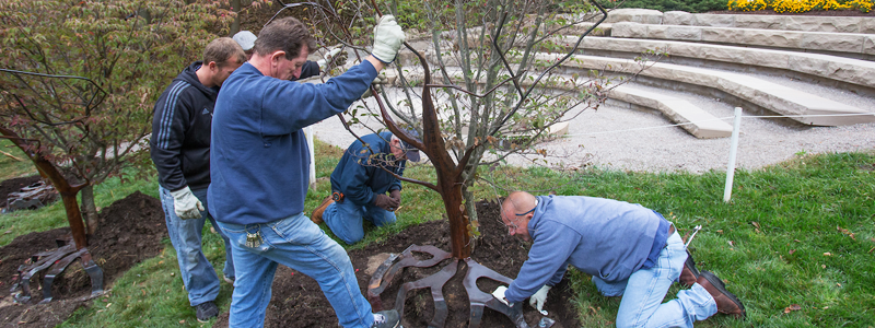 A group from Physical Facilities works together to install a sculpture next to a tree at the Freedom Summer Memorial