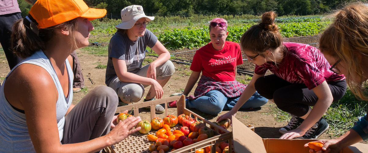 Students at the Institute for Food kneel or sit on the ground as they look over baskets of harvested vegetables