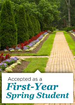 Accepted as a First-Year Spring Student