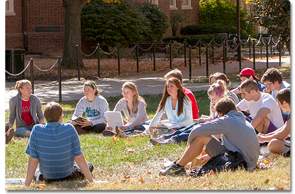 Students studying in the grass
