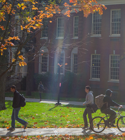 Students walking on campus as sun light is shining down on them from above