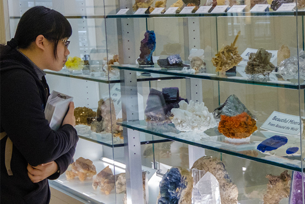 A student observes varieties of rocks and minerals on display at the museum.