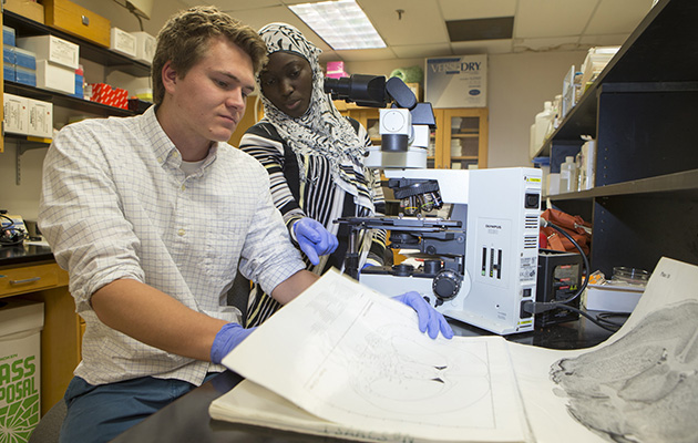 Two graduate students working in a Neuroscience Lab.