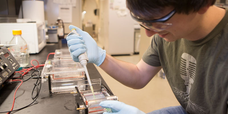 Junior Nathan Friesel works in Dr. Michael Kennedy's lab