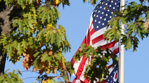 American flag with tree leaves in foreground