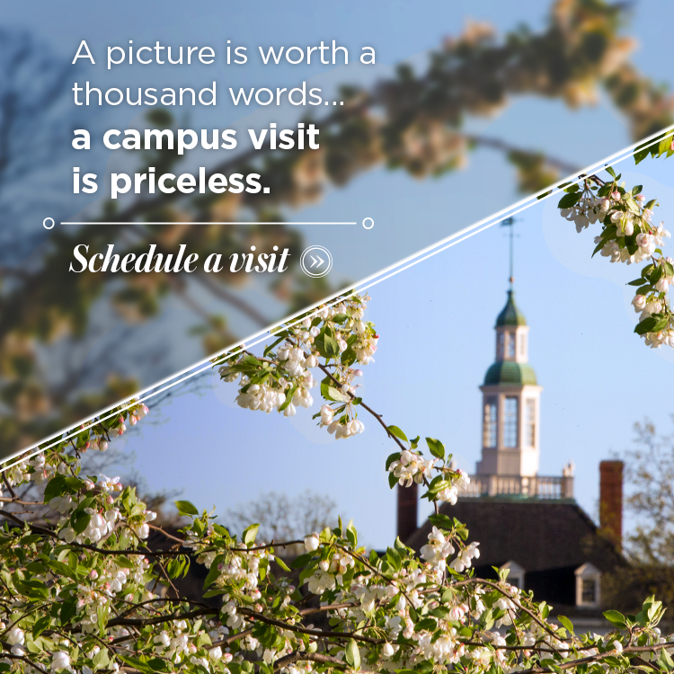 A picture is worth a thousand words...a campus visit is priceless. Schedule a visit » Photo of trees blossoming in front of the MacCracken cupola