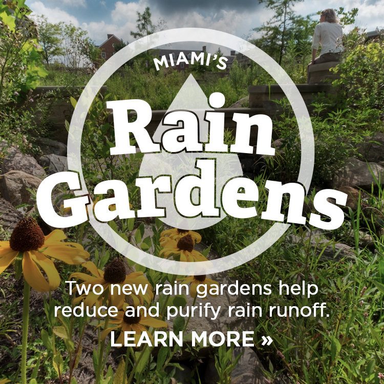 Miami's rain gardens. Two new rain gardens help reduce and purify rain runoff. Learn more »