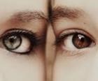 eyes-thumb.jpg