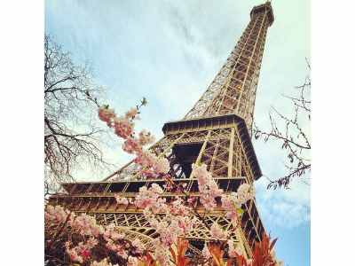 A low-angle view of the Eiffel Tower in springtime