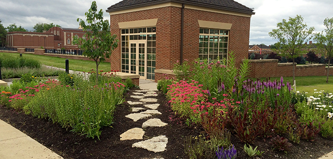 A New Garden Installed By Horticulturalist Dan Garber Creates A Busy  Corridor For Butterflies And Other