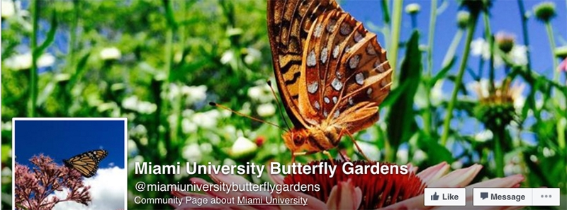 Attractive Butterfly Garden Facebook Banner
