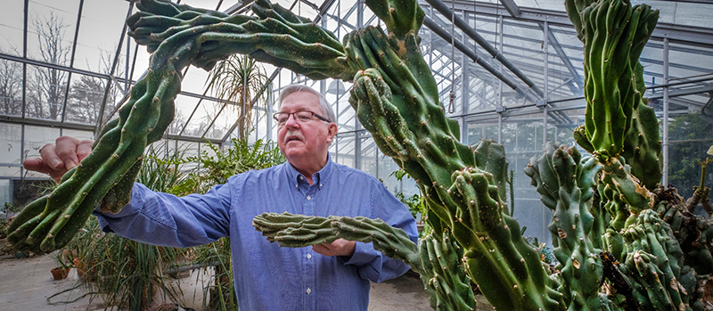 Jack Keegan, greenhouse manager and botany instructor, with a cactus plant in the Belk Greenhouse (all photos by Scott Kissell).