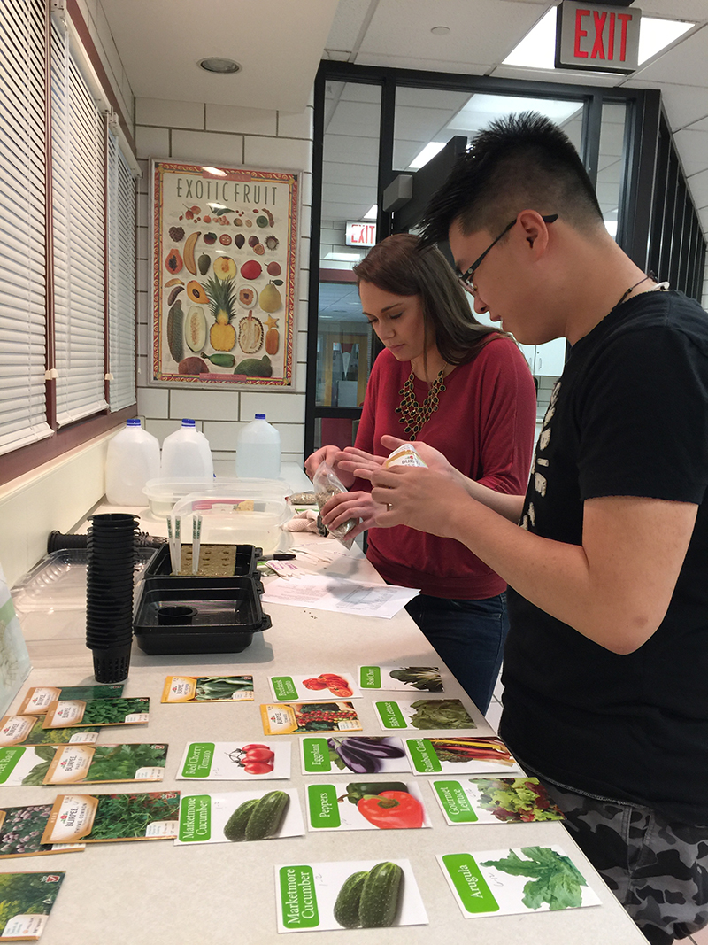 Nutrition and dietetic students plant seeds in rock wool medium pods for the tower gardens.