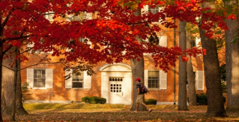 Student walking in the quad during the fall
