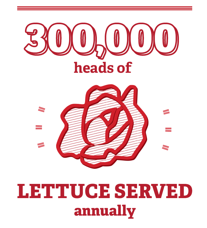 300,000 heads of lettuce served annually