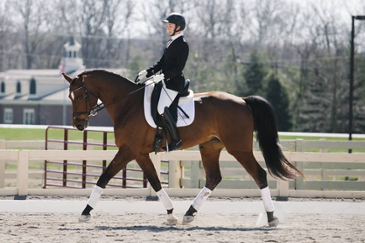 Member of the dressage team at Miami University.