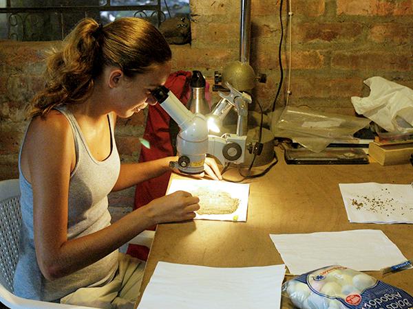A student views an artifact through a microscope