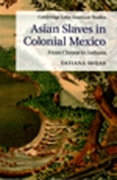 Asian Slaves in Colonial Mexico: From Chinos to Indians book cover