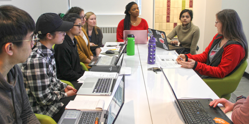 Student - faculty project meeting