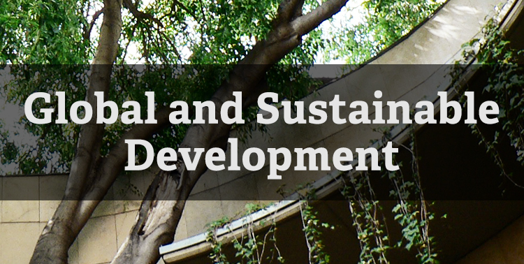 Global and Sustainable Development