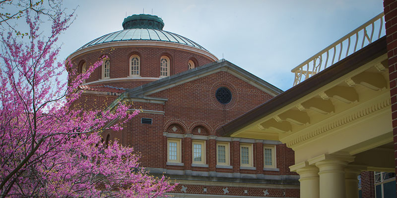 exterior of alumni hall with redbud tree in bloom