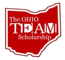 TEAM Scholarship