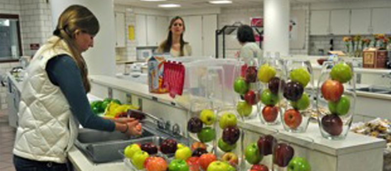 student working in a dietetics lab