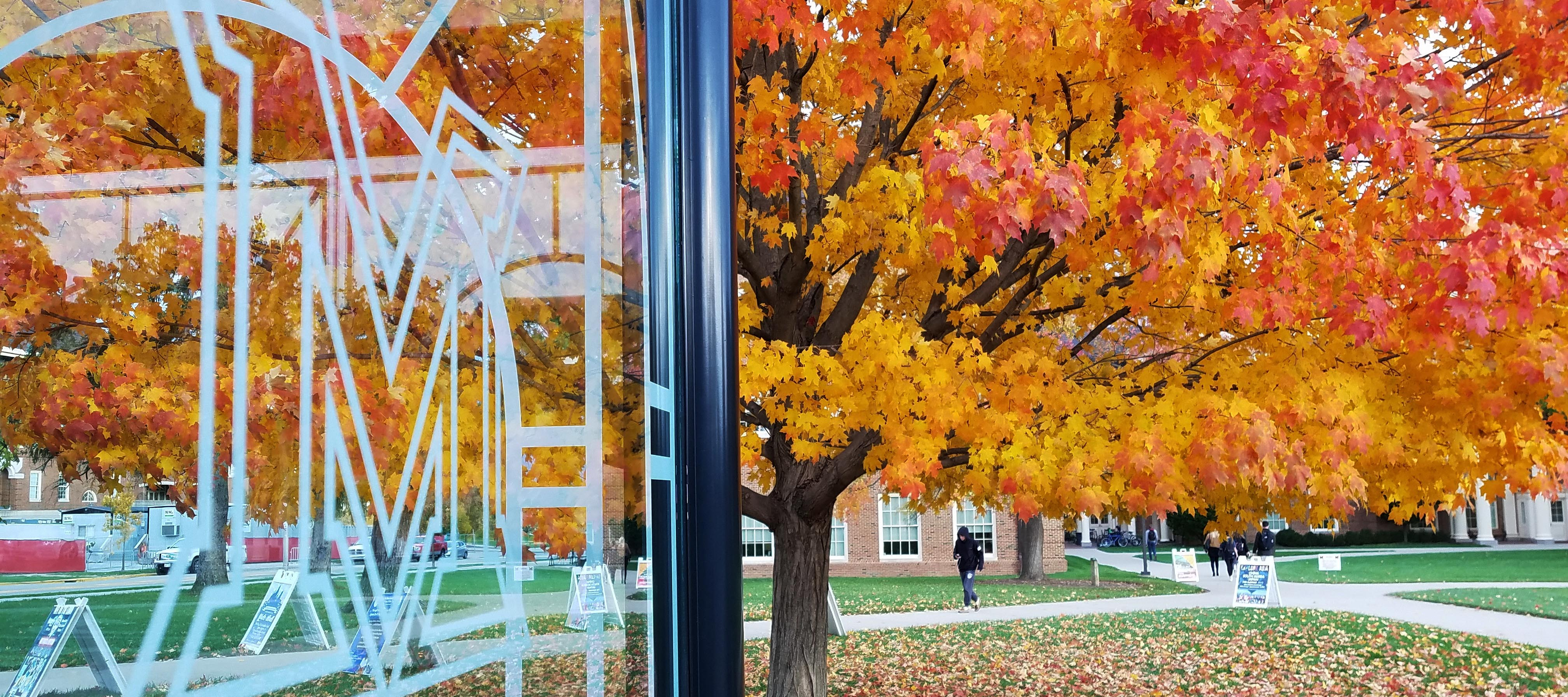 Fall view of Farmer School and trees