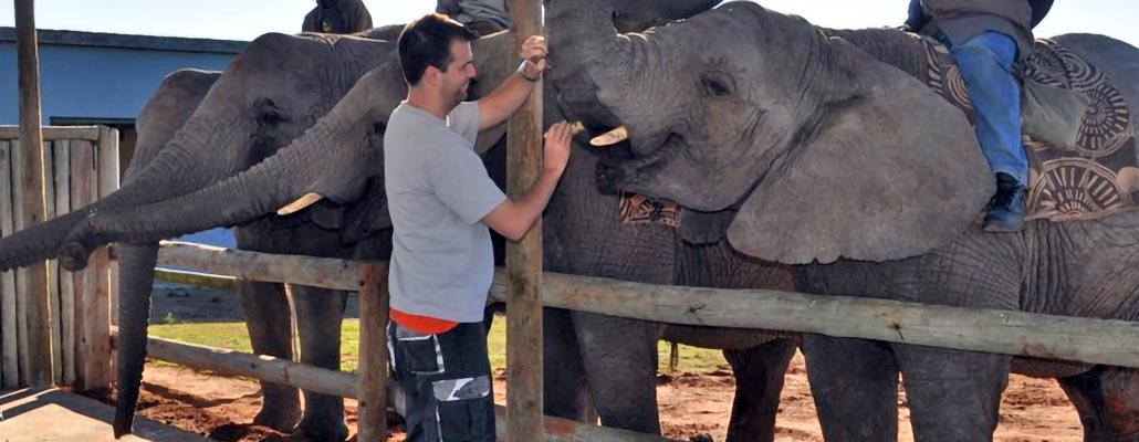 Student visiting elephants in South Africa
