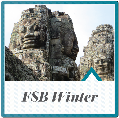 FSB Winter button