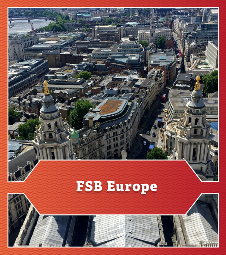FSB Europe. View overlooking St. Peter's Cathedral.