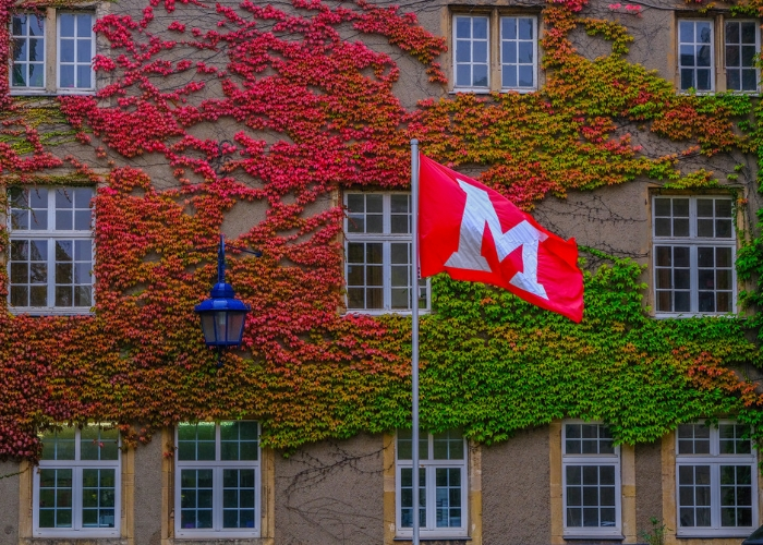 Miami flag blowing in wind in front of Miami chateau in Luxembourg; cannot see the entire castle, just the green and red ivy along the walls of building