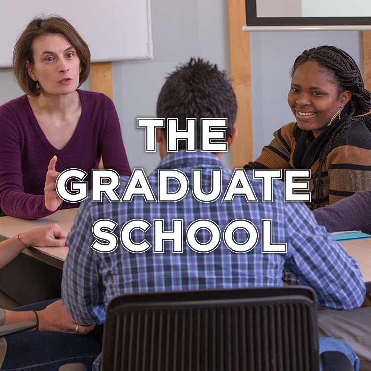 Four graduate students sit around a table and are engaged in a discussion with a female professor.