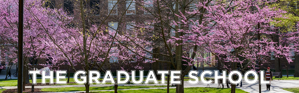 The Graduate School. Trees on campus, covered with bright purple blooms.